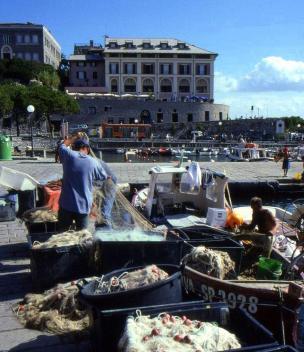 Fisherman dry & mend nets, Porto Venere, Italy
