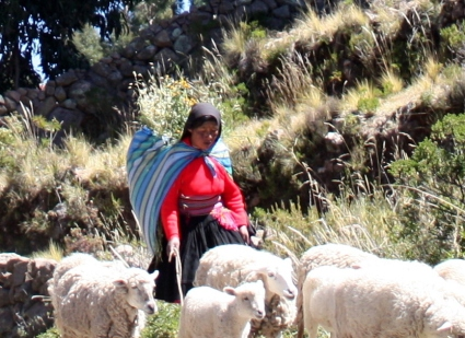 Woman in Catalán garb herds her sheep