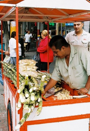 A vendor sells sugar cane treats.