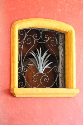 Agave plant window detail, 7 Leguas distillery