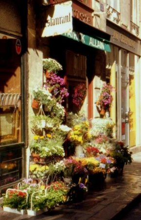Paris Street Scenes 005
