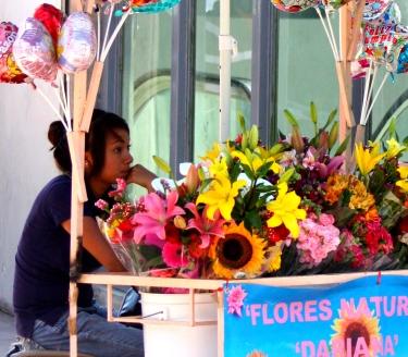 Flower merchant, Guadalajara's Parque Revolución.
