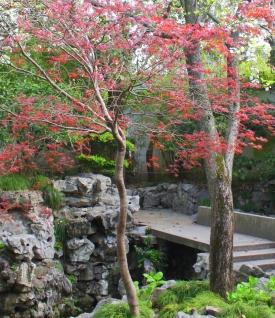 Springtime blossoms add brilliant color.